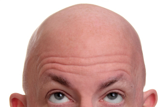 fat stem cells talk to follicular stem cells in hair growth