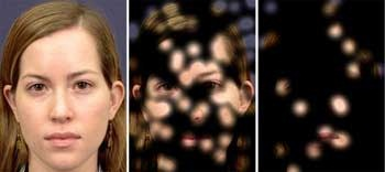 Face Recognition from Single Neuron Study